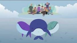 Embedded thumbnail for Три кита: что такое Движение Красного Креста и Красного Полумесяца
